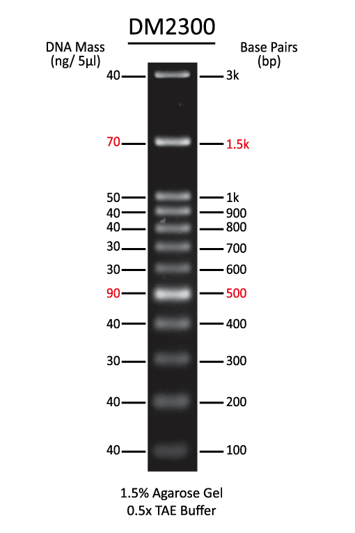 /attachments/125185102237216009125042112163137173047210153220/100-bp-DNA-marker-DM2300.png